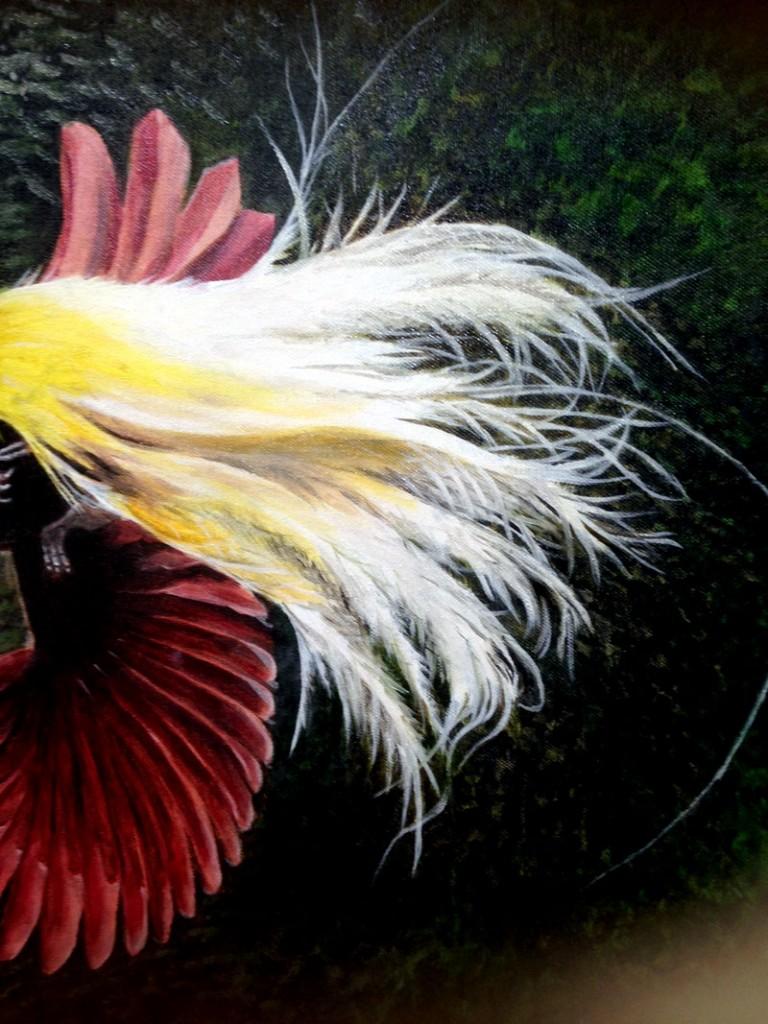 bird of paradise detail tail top